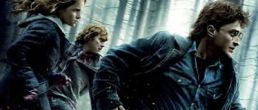 Nuevos Posters de Harry Potter and the Deathly Hallows: Part I
