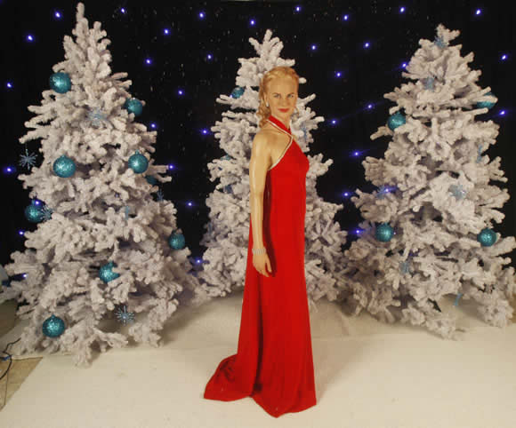 La figura de Nicole Kidman 2