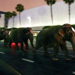 elefantes_homenaje_michael_jackson