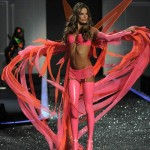 victoria_secret_fashion_show_2009_alessandra_ambrosio